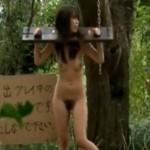野外調教 森の中でギロチン拘束された可愛い露出マゾ奴隷