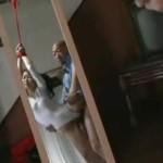 片足吊り縛りで剃毛されるレオタードの美少女