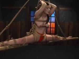 巨乳 爆乳 調教 SM 拘束 緊縛 騎乗位 犯され 拷問 おっぱい(3)