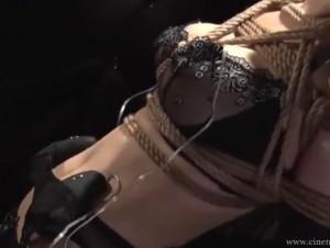 熟女 人妻 アナル 巨乳 拷問 アヘ顔 乳 縛り アヘ アナ(3)