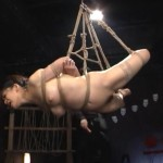 逆海老縛りで吊るされ鞭打たれるM女が妖艶